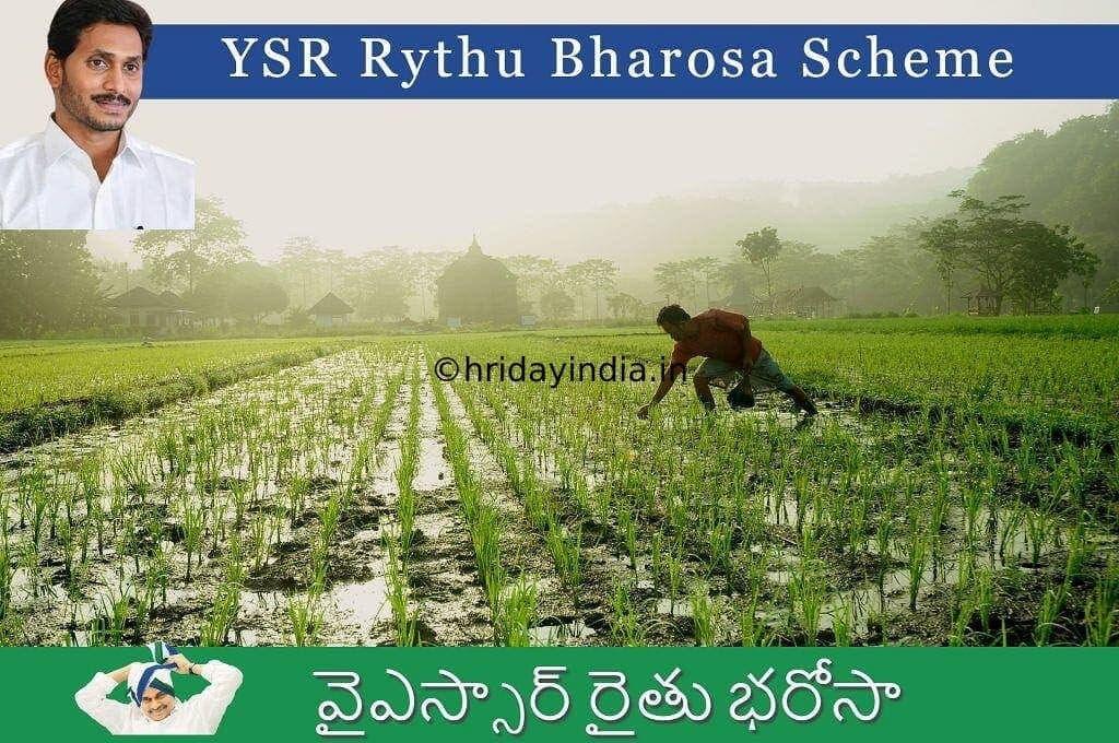 Ysr Rythu Bharosa Scheme Apply Online, Status, Eligibility